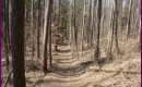 Przewodnik po ścieżkach pieszo-rowerowych na pograniczu polsko-słowackim obraz miniatury